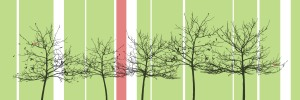 canvas-trees-white, red stripe, black trees